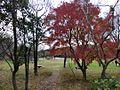 Tokyo Port Wild Bird Park 03.jpg