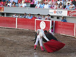 bullfighter uses his muleta