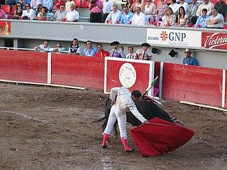 Muleta - A bullfighter uses his muleta
