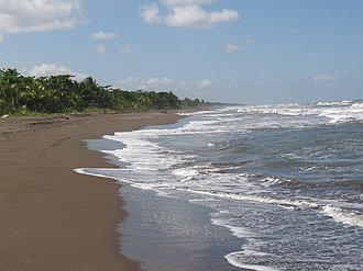 Tortuguero National Park - Beach at Tortuguero National Park