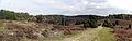 Totengrund-Panorama.jpg