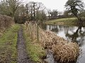 Towpath of the Lancaster Canal, in Galgate, Lancashire.jpg