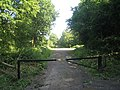 Track through Abbot's Wood - geograph.org.uk - 1425301.jpg