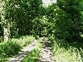 Track through deciduous wood at Wragmire - geograph.org.uk - 484069.jpg