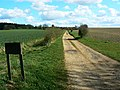 Track to Harding Farm Cottages and Haredown Farm - geograph.org.uk - 1246716.jpg