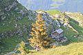 Trail to Silberenalp - panoramio (89).jpg