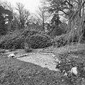 Trap bij Rhododendrons - Molenhoek - 20002569 - RCE.jpg