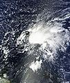 Tropical Storm Ophelia Sept 24 2011 1420Z.jpg