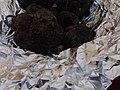Truffe noire de Provence.jpg