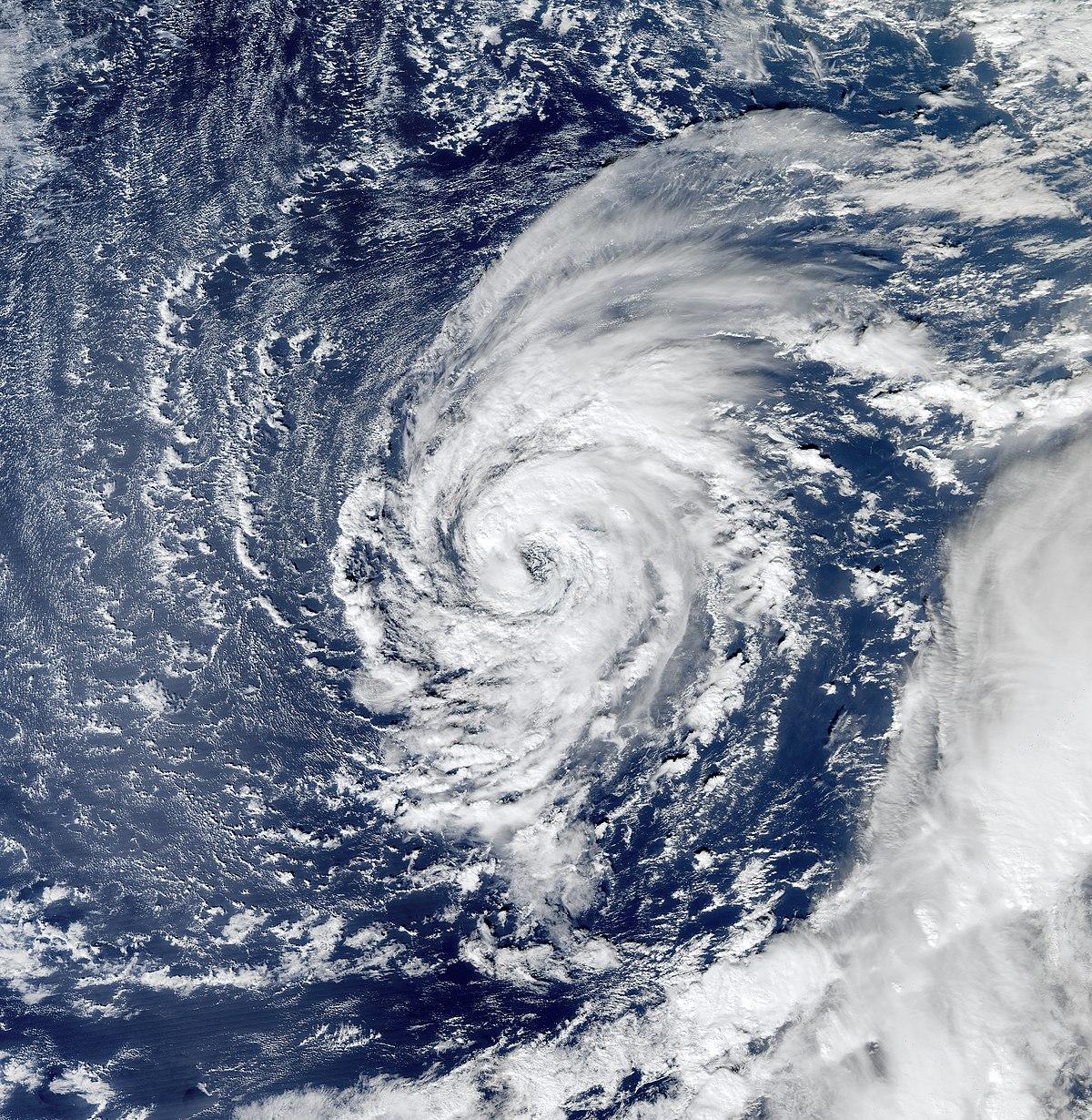 Tropical Storm Delta 2005 Wikipedia