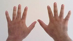 Decimal - Ten fingers on two hands, the possible starting point of the decimal counting.