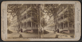 U.S. Hotel Cottages, Saratoga, N.Y, from Robert N. Dennis collection of stereoscopic views.png