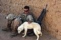 U.S. Marine pets dog in southern Marjah.jpg
