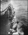 U.S. Marines stand along the rail and watch the ocean aboard the USS Clymer. To the aft a Marine is washing his... - NARA - 532397.tif