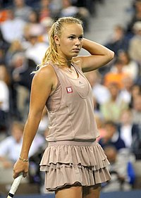 US Open 2009 4th round 156.jpg