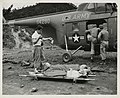 Unloading wounded from helicopter (WRAIR 240), National Museum of Health and Medicine (3299285979).jpg