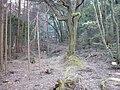 Usayamajo11.jpg