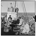 Vårfiske på Vardø - L0049 770Fo30141609280096.jpg