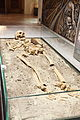 Vampire skeleton of Sozopol in Sofia PD 2012 11.JPG