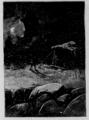 Verne - César Cascabel, 1890, figure page 0258.png