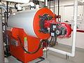 Viessmann Vertomat Condensing Boiler.JPG