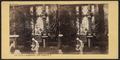 View in a Conservatory, Fifth Avenue, N.Y, from Robert N. Dennis collection of stereoscopic views.png