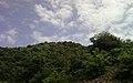 View of Eastern Ghats at Punyagiri1.jpg