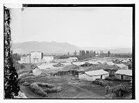 View of Jericho and the Jordan Hotel LOC matpc.10582.jpg