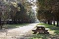 Views from Piscataway Park (fbf7ac9b-05de-41dd-b37f-d1f3eb9de03e).jpg
