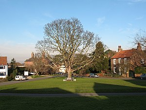 Aldborough, North Yorkshire - Image: Village Green Aldborough