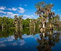 Wakulla Springs Archeological and Historic District.jpg