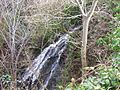 Waterfall near Hawpike Farm, Draughton - geograph.org.uk - 677962.jpg