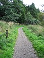 West Highland Way in Craigallian Woods, Stirlingshire - geograph.org.uk - 53596.jpg