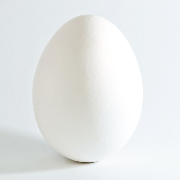 image of egg