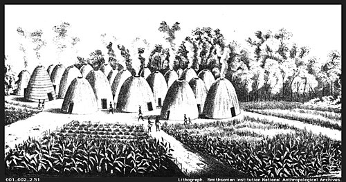A sketch of a Wichita Indian village in the 19th century. The beehive shaped grass-thatched houses surrounded by corn fields appear similar to those described by Coronado in 1541. Wichita Indian village 1850-1875.jpg
