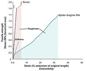 Spider silk -  An illustration of the differences between toughness, stiffness and strength