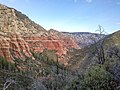 Wilson Mountain North Trail, Sedona, Arizona, Coconino County - panoramio (43).jpg