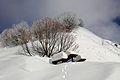 Winter in the Mountains near Sochi.JPG