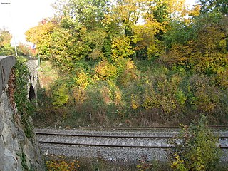 Wolvercote Halt railway station Disused railway station in Oxfordshire, England