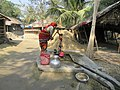 Woman pumps water from a shallow tubewell.jpg