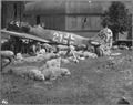 Wrecked plane in Nuremberg, Germany, 1946 - NARA - 542347.tif