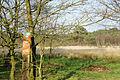 Wunderburger Moor.JPG