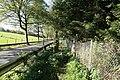 Wuppertal - Obere Herbringhauser Talsperre - L81 44 ies.jpg