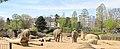 Zoo Koeln Elefantenpark elephas maximus.jpg