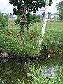 Zoo Tábor-Větrovy, ibis 02.jpg