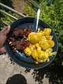 (Boiled) Potatoes with Yellow Curry and Grilled Mutton (Goat Meat).jpg