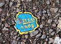 ?RECKO 2007.jpg