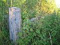 Õisu mõisa kalmistu 02.JPG