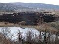 Απόπειρα περιορισμού των καλαμιώνων της λίμνης Άγρα με φωτιά.jpg