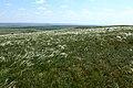 Вид в юго-восточном направлении. На горизонте - Боевая гора - panoramio.jpg